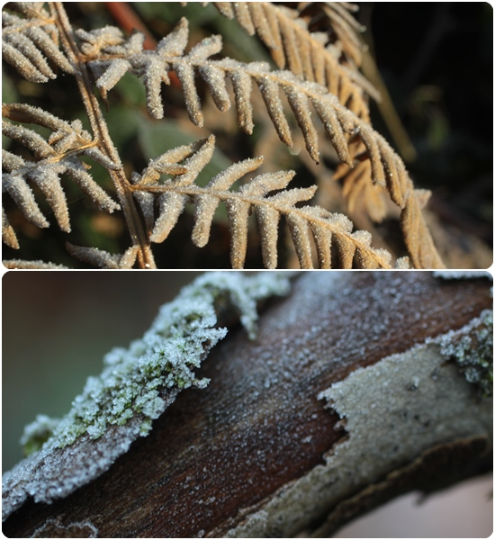 inspiration-hiver_2